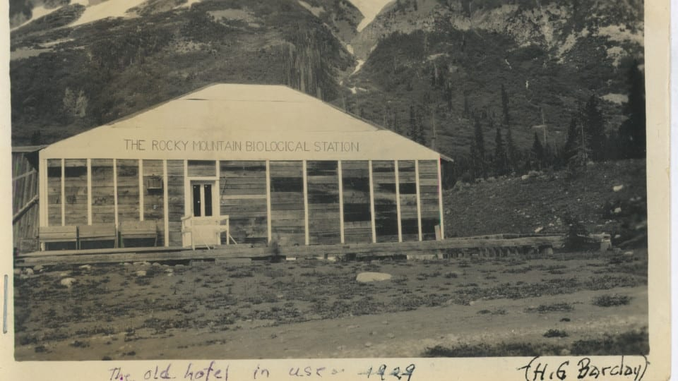 RMBL rocky mountain biological laboratory Gothic Colorado