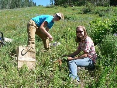 Invasive Weed Day volunteers. Photo by Nana Naisbitt