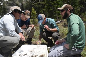 Wissinger lab scientists sampling in the field